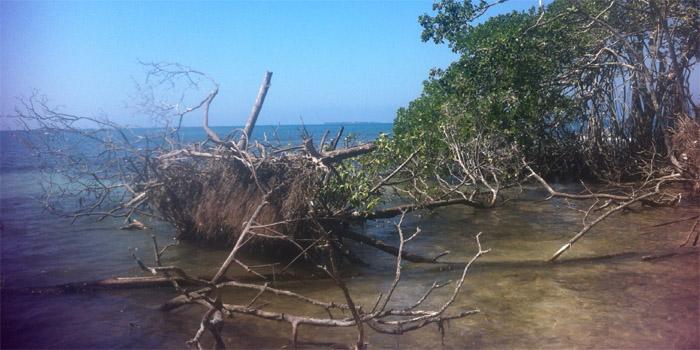 Isla Cabruna Islas de San Bernardo