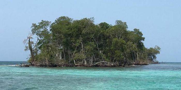 Isla Mangle islas de San Bernardo