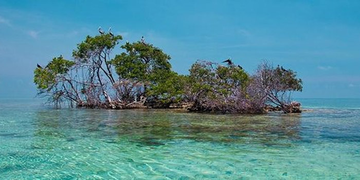 Isla Maravilla islas de San Bernardo
