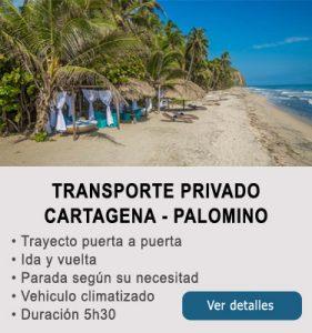 Transporte Cartagena y Palomino