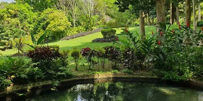 Jardin botanico de Cartagena